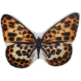 Almofada Borboleta Tigresa
