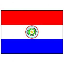 Bandeira do Paraguai 1.60 Mt.