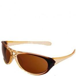 Óculos de Sol AW Brown Glass Masculino