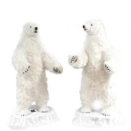 Par de Urso Polar que Falam Entre Si Hansa
