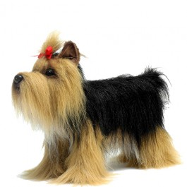 Cachorro Yorkshire Terrier em Pelucia Hansa