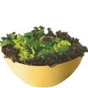 Conjunto de Salada Wave 3 Peças