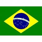 Bandeira do Brasil 1.60 Mt.