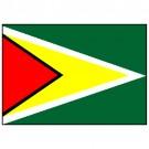 Bandeira da Guiana 1.60 Mt.