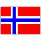 Bandeira da Noruega 1.60 Mt.