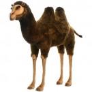 Camelo Bactriano em Pelúcia Hansa
