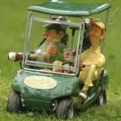 Carrinho de Golf com Dois Jogadores